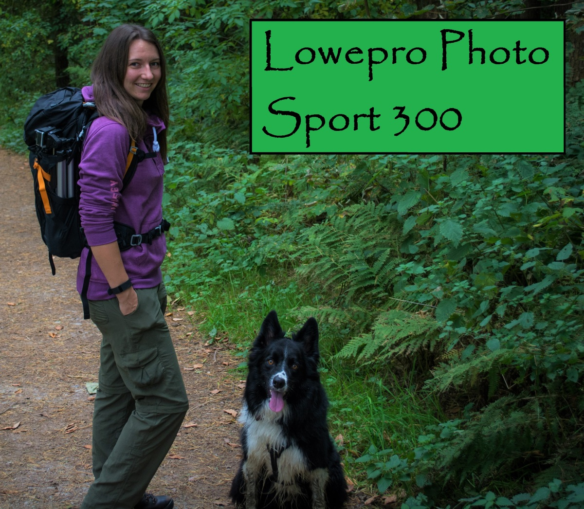 Lowepro Photo Sport 300 camera backpack