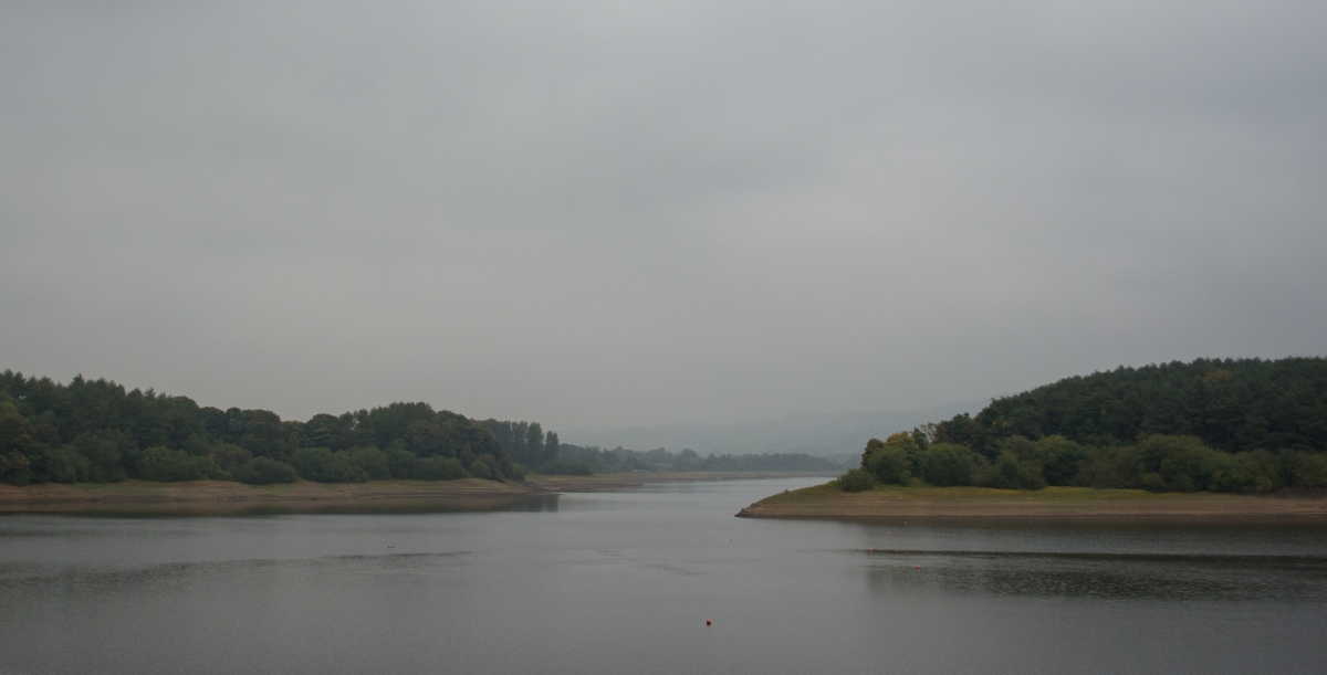 Featured Walk: Tittesworth reservoir (and blackberry muffins!)