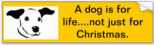 a_dog_is_for_life_car_bumper_sticker-r0ed85ec908794f06879a12ca1952927a_v9wht_8byvr_512