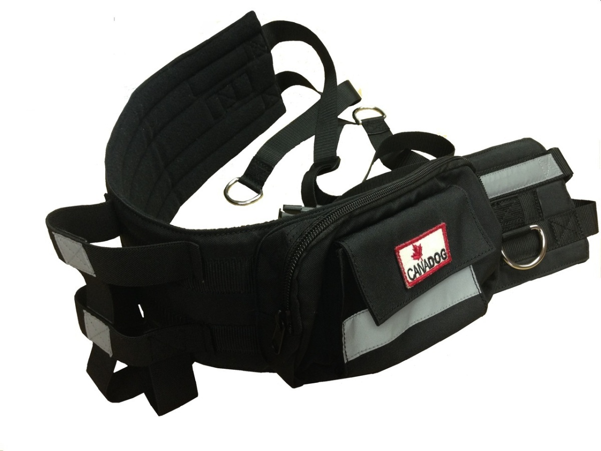 Hands free running/walking belt from CanaDog