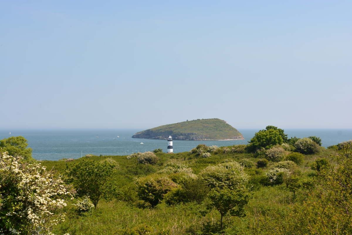 Featured Walk: Llangoed to Puffin Island and Aberlleiniog Castle