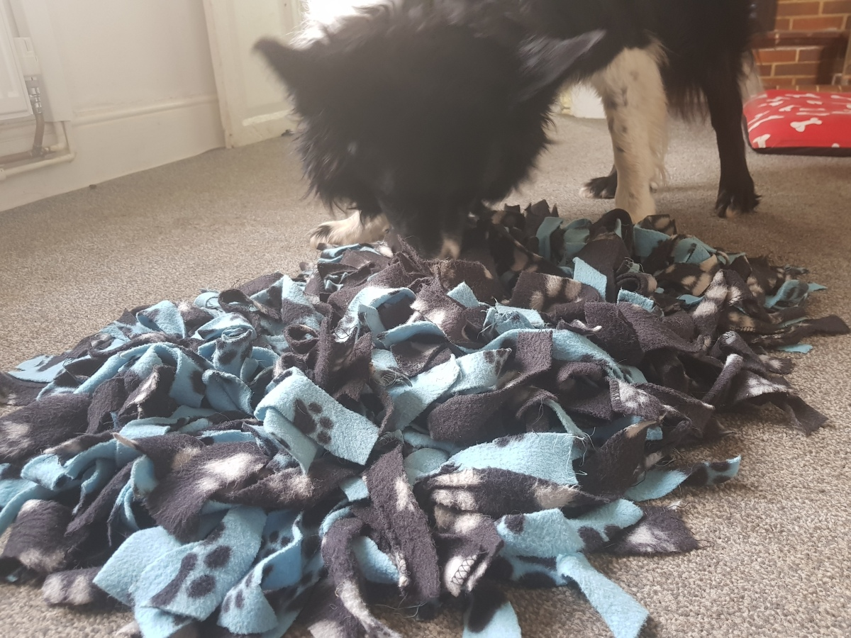 The brilliance of snuffle mats